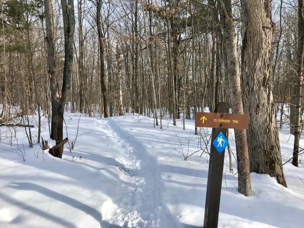 Frontenac - Corridor Trail