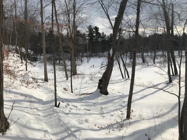 Frontenac - Doe Lake Loop