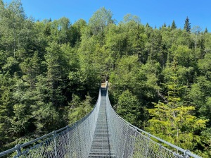 Pukaskwa - White River Suspension Bridge
